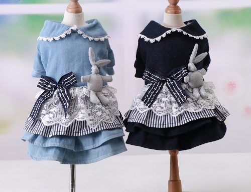 Cowboy cartoon princess dress lace cute dog clothes – pet dresses clothes