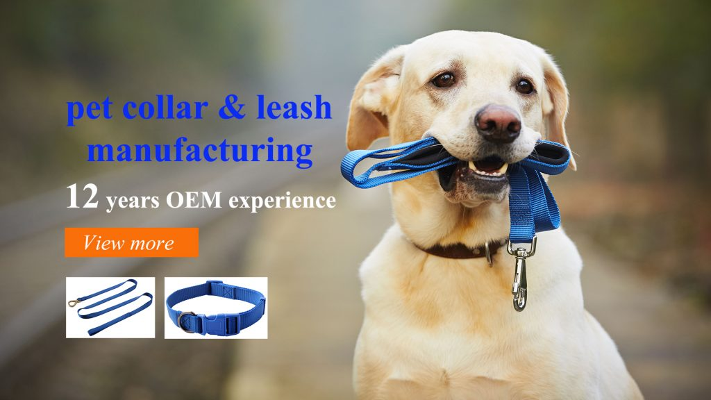 Dog leash manufacturing company