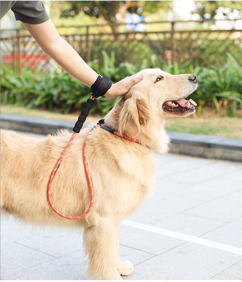 Durable Pet Dog Slip Rope Leash Moutain Climbing Rope Lead No Pull Training Leash For Dogs