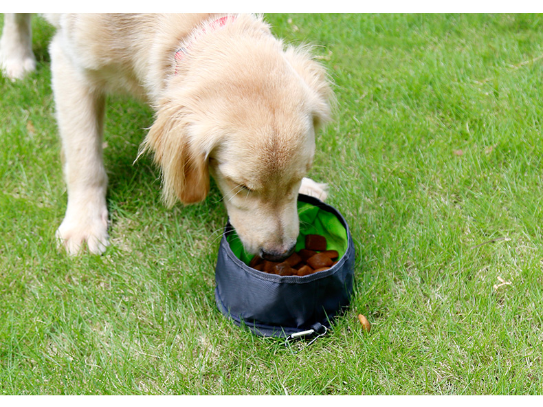 Outdoor Collapsible Portable Feeding Pet Dog Water Bowl Travel