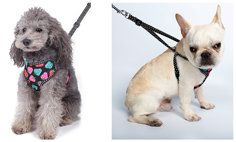 Lovely Adjustable Multi-color Cotton XXS Pet Small Dog Harness