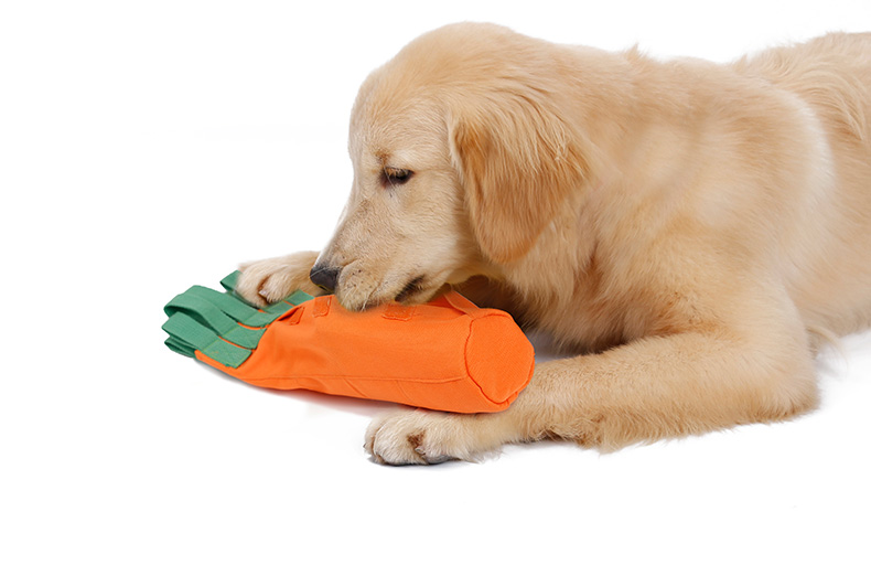 Durable Cotton Dog Toys Carrot Design IQ Food Treats Snuffle Training Pet Chew Toys Bottle Fill Crunky Functional Pet Dog Toys