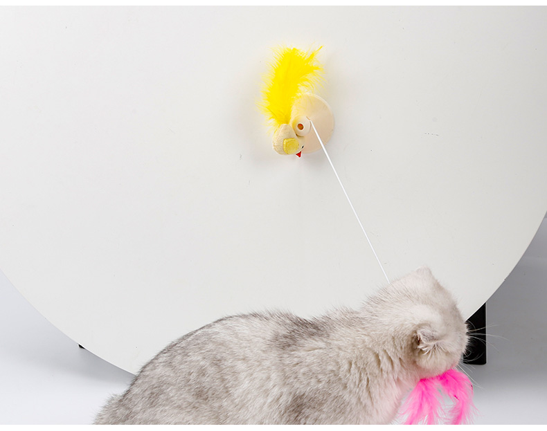Realistic and funny pet toys fashion for cat ,The elastic elastic band cat toys for sale