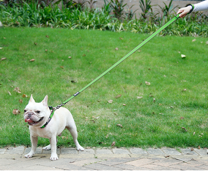 Heavy Duty Reflective Dog Leash Delux Nylon Pet Lead with Padded Handle