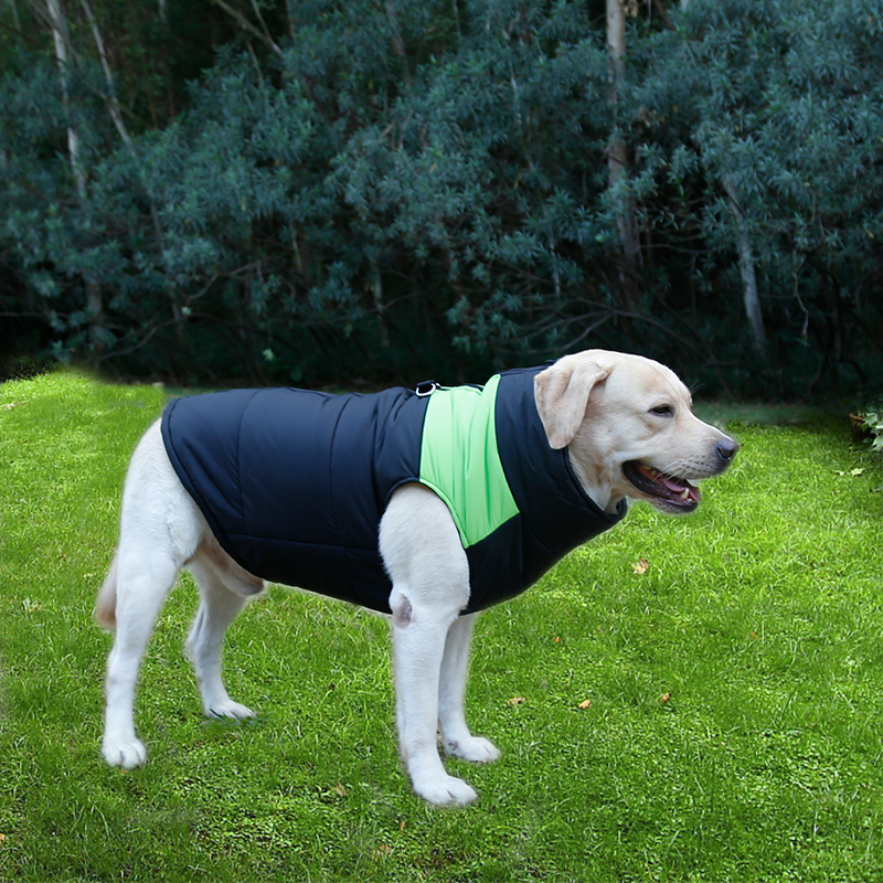 China Pet Products Factory Hot New Waterproof Nylon Fabric Easy To Clean For Pet Dog Clothes Winter