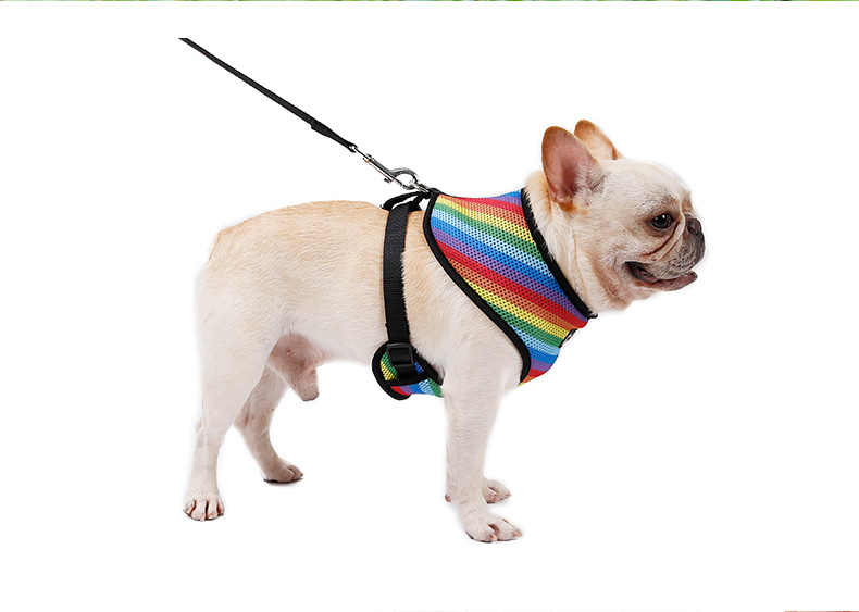 Comfort wearing pet harness with lead vest , Eco friendly soft and breathable pet harness