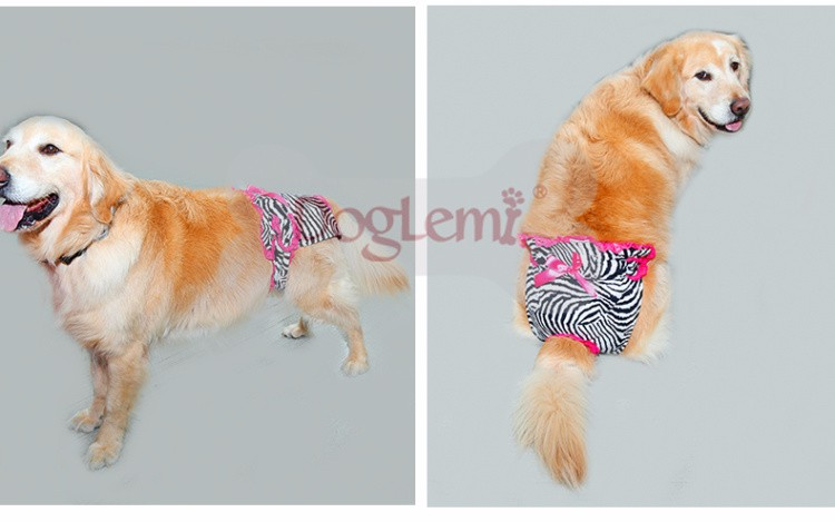 Sexy Large Pet Pants Customized Reusable Washable Female  Dog Diapers