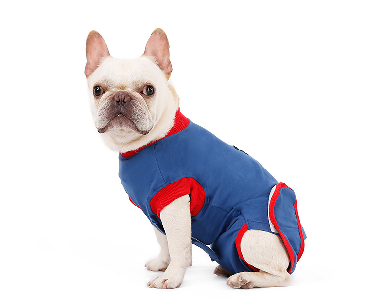Protect Skin Diseases Comfortable Cotton Fabric Dog Recovery Suit