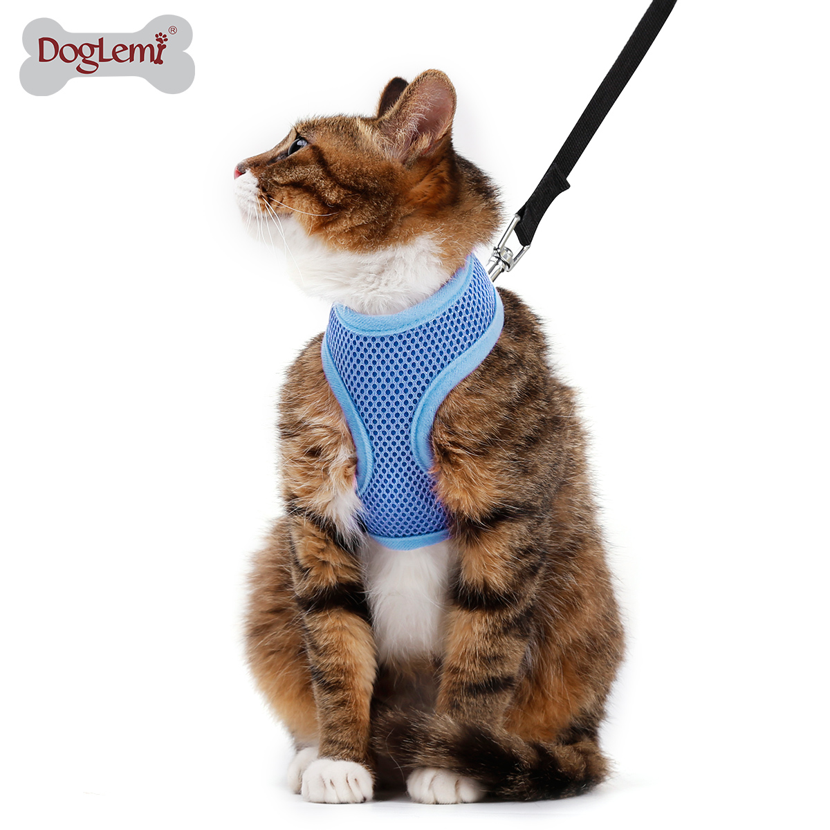Pet Leash Outdoor Traveling Mesh Walking Cat Harness With Leash
