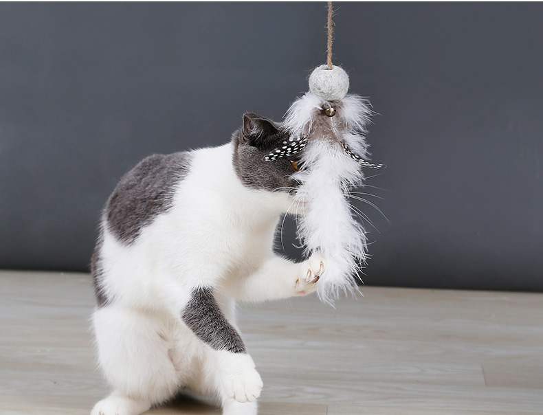 Naturally wear-resistant cat teaser cat toy feather ,Eco friendly durable cat teaser toy interactive