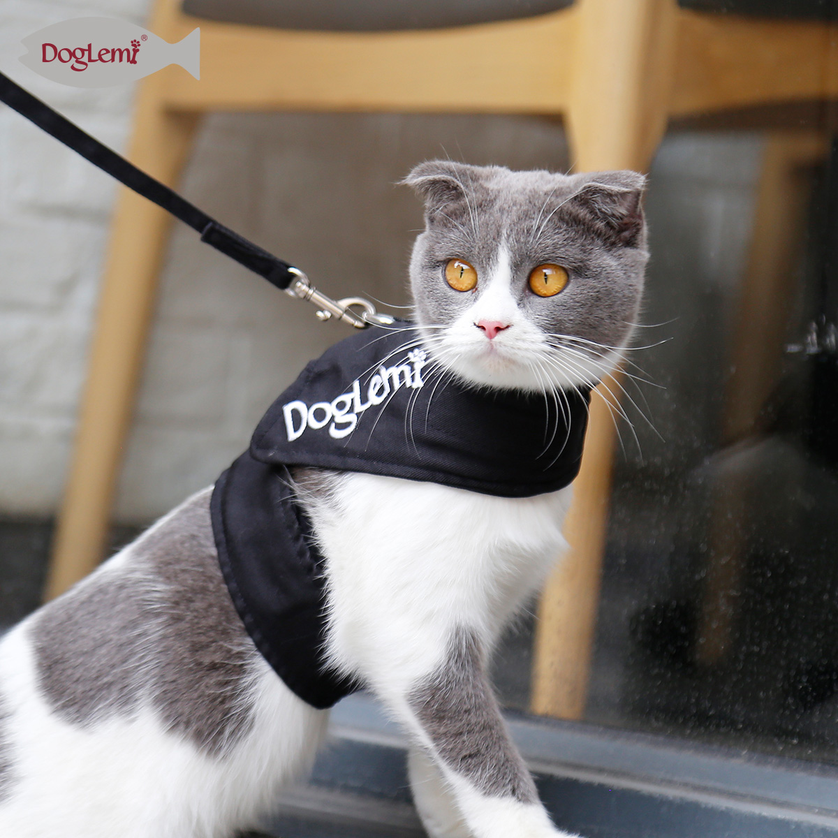 Embroidery Cat Walking Harness Leash For Cat Puppy Rabbit Dog Leash Harness Set