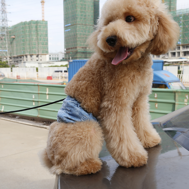 Factory Wholesale Male Dog Belly Band Cotton Pet Belly Wrap Pants Washable Dog Diaper