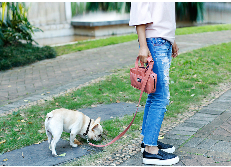 Easy Walking Dog Pet Collar and Leash with Handle Bag Dual Doggie Bungee Pet Snack Bag