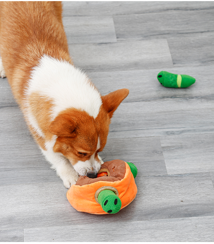 Washable increase interest toys food for pet dog ,Squeaky hide and hunt pet toys plush dog